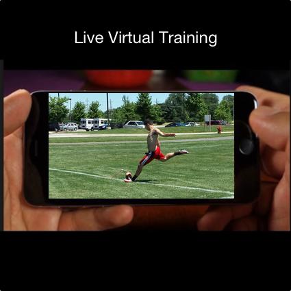 virtual-lesson-kicking-live-training